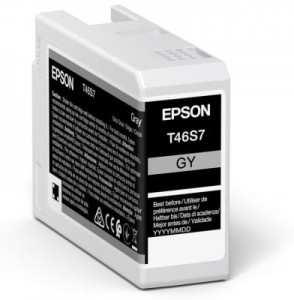 Tusz Epson Gray T46S7 - GY